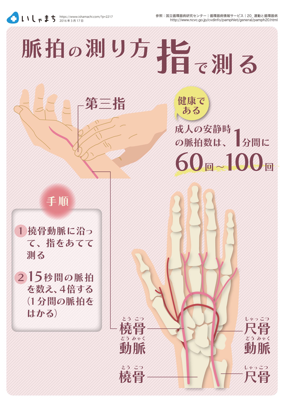 脈 の 測り 方